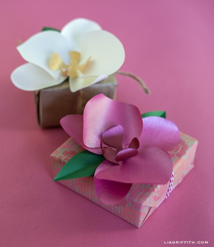 Tutorial & Template - Paper Orchid Gift Topper by Lia Griffith
