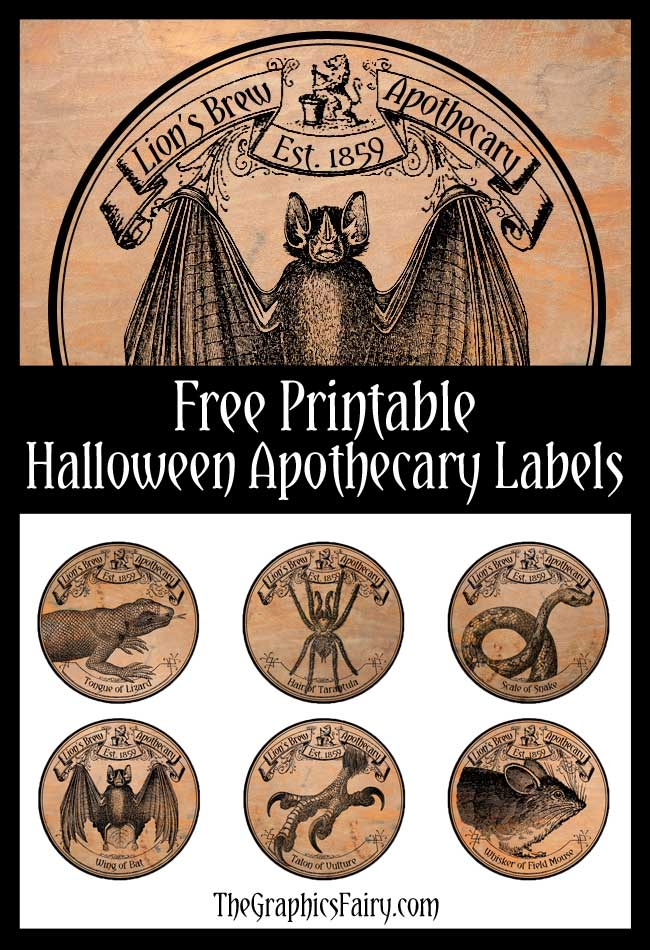 picture about Free Printable Apothecary Labels called Eye of Lizard, Tail of Mouse Cost-free Halloween Apothecary