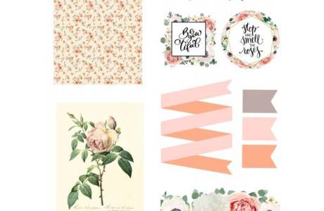 Floral Rose Downloads