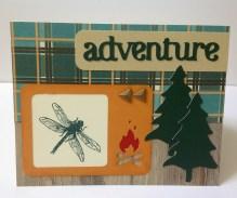 Timberline adventure 3