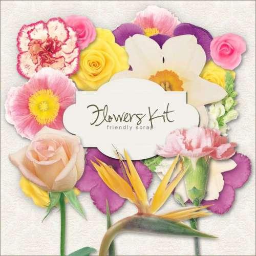 Flowers-Kit-500x500