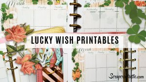 Lucky Wish Printable Happy Planner Sticker Overlay and Inserts