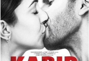 Kabir Singh Became 9th Highest grossing Indian Films Of All Time feature image