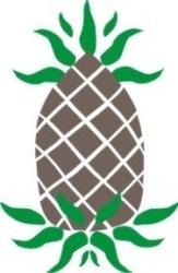 pineapple stencil primitive