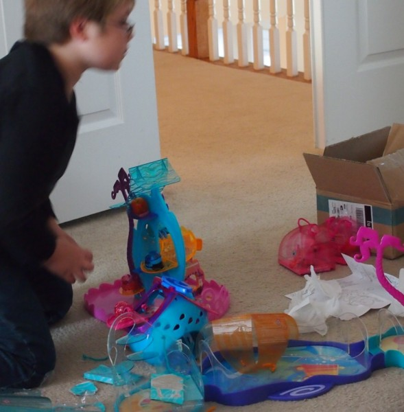 Playing With the Full Xia-Xia Pets playset
