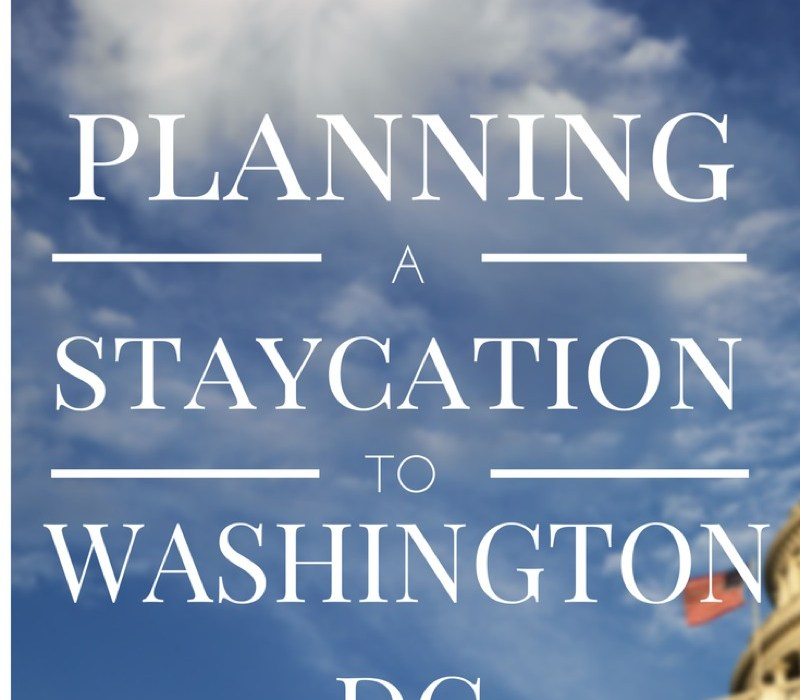 Planning a staycation in Washington DC for my family