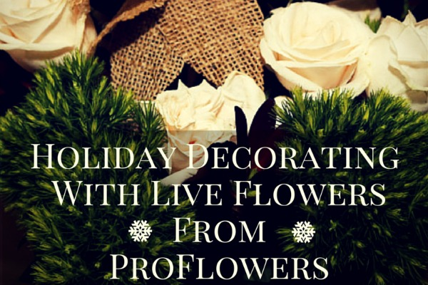 Holiday Decorating With Live Flowes from ProFlowers and Live Plants from ProPlants #Spon