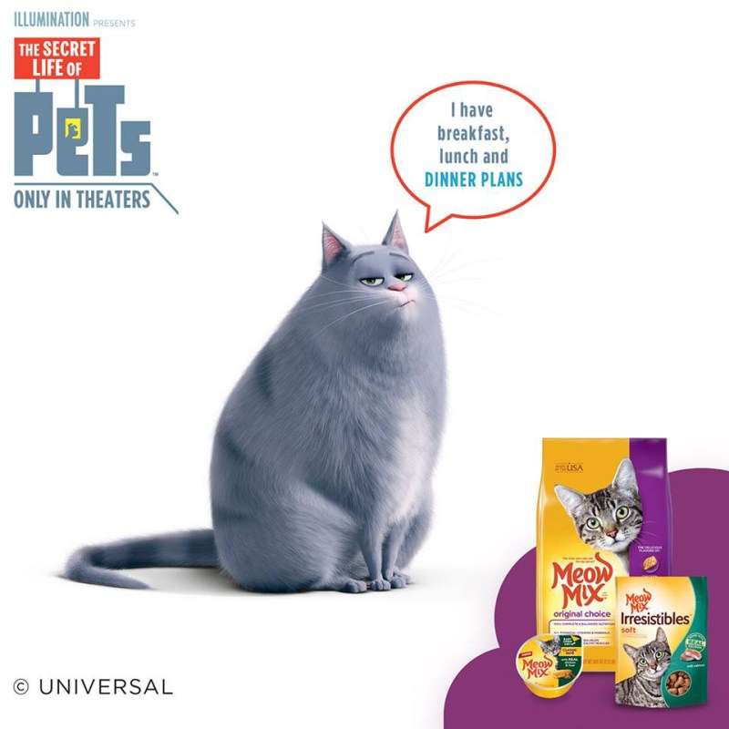 The Secret Life of Pets movie is a comedy about the lives of our pets after we leave the house. What do they do when they are alone? #TheSecretLifeOfPets