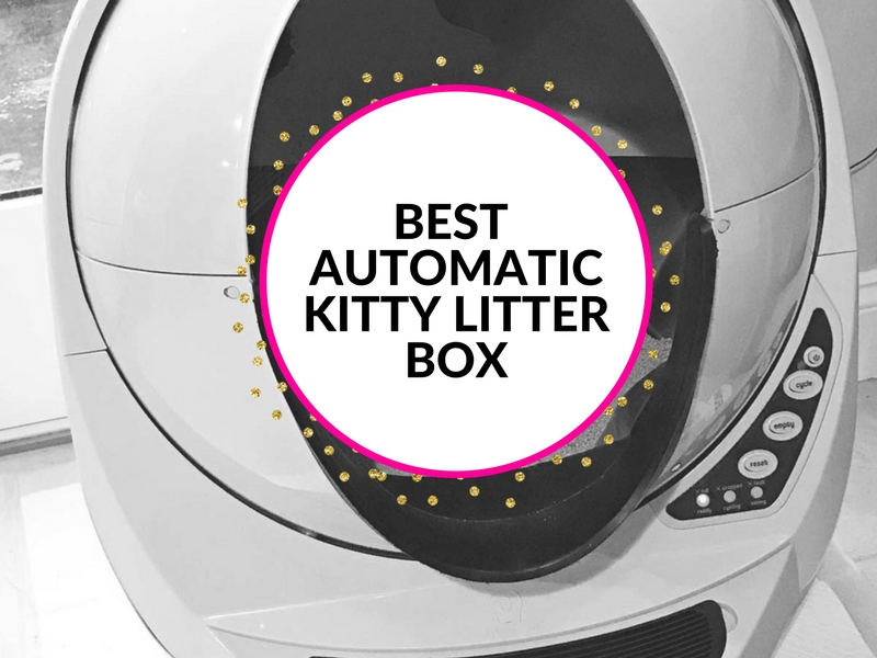 Win a Litter-Robot Open Air automatic kitty litter box. #freelitterrobot #literrobot