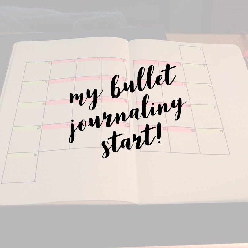 The beginning of my bullet journaling journey. My bery first page!