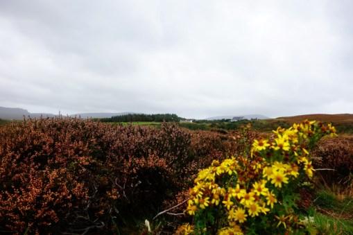 Schotland herfst