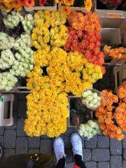 Leuven zaterdagmarkt
