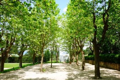 Zuid-Frankrijk originele activiteiten