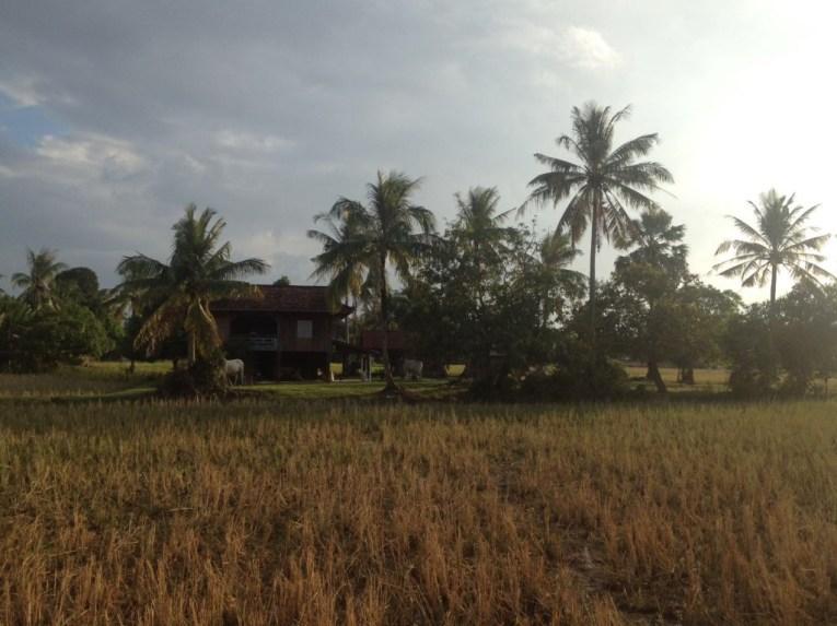 Cambodja platteland