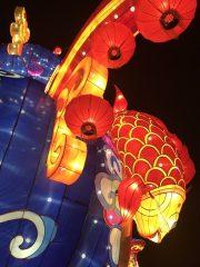 China Light Zoo Antwerpen