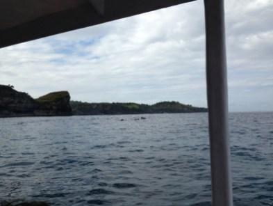Nusa Lembongan snorkeltrip 2