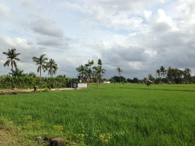 Route Indonesie Seminyak Favehotel