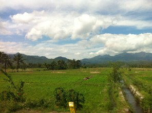Lombok nature 6