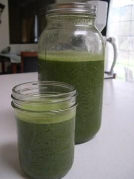Greensmoothie2