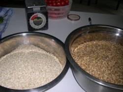 Grain washed and dried ready for hand milling.