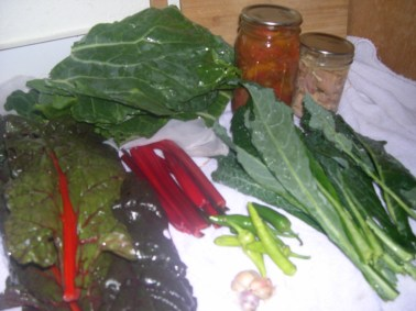 Chard, Kale, Collards, peppers, garlic, canned tomatoes, and chicken grown in your backyard.