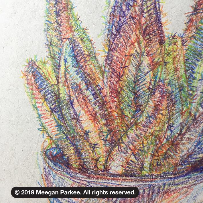 multicol_ex_1_cactus_strathmore_tone_paper_closeup