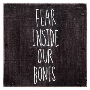 The Almost- Fear Inside Our Bones