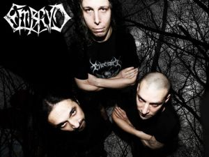 Embryo_Band_2014_2