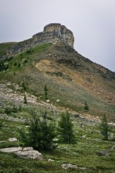 Rock outcropping on the side of Citadel Peak, seen as we crossed Citadel Pass from BC back into Alberta.