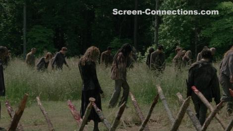 The.Walking.Dead-Season.4-BluRay-Image-03