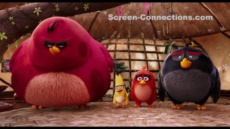 The.Angry.Birds.Movie-Blu-ray.Image-02
