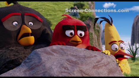 The.Angry.Birds.Movie-Blu-ray.Image-04