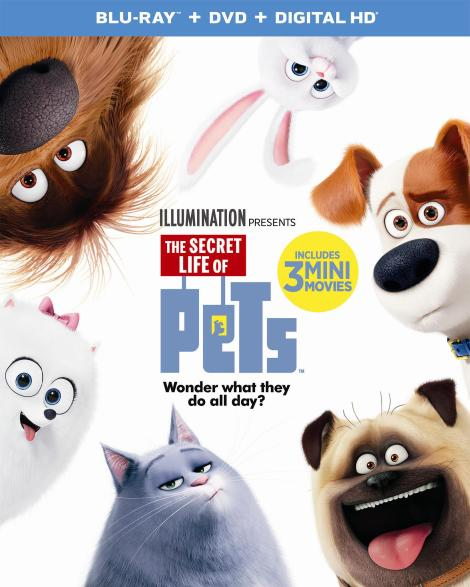 the-secret-life-of-pets-2d-blu-ray-cover
