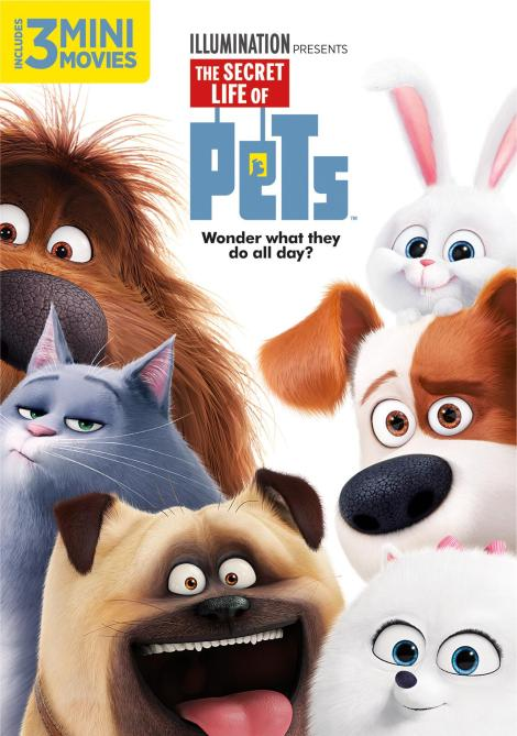 the-secret-life-of-pets-dvd-cover