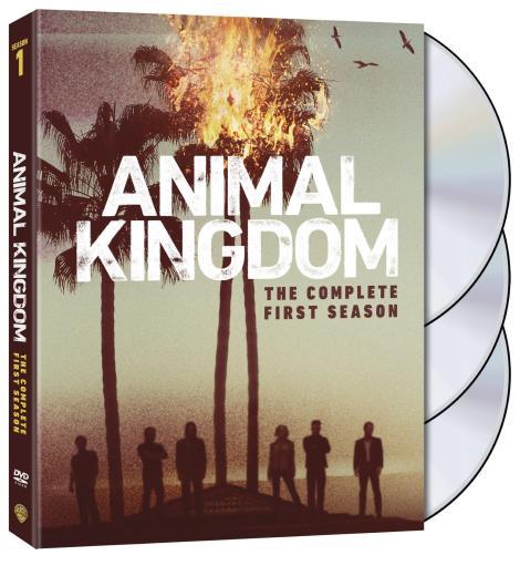 animal-kingdom-season-1-dvd-cover-side