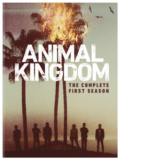 animal-kingdom-season-1-dvd-cover