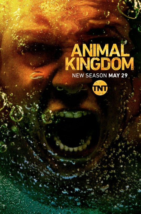The Cody Family Returns In The Official Trailer & Poster For Season 3 of TNT's 'Animal Kingdom' 2
