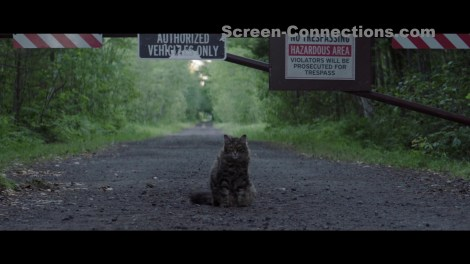 [Blu-Ray Review] 'Pet Sematary': Available On 4K Ultra HD, Blu-ray & DVD July 9, 2019 From Paramount 4