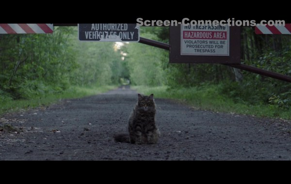 [Blu-Ray Review] 'Pet Sematary': Available On 4K Ultra HD, Blu-ray & DVD July 9, 2019 From Paramount 37