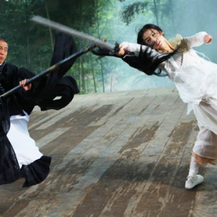 sorcerer and the white snake tony ching