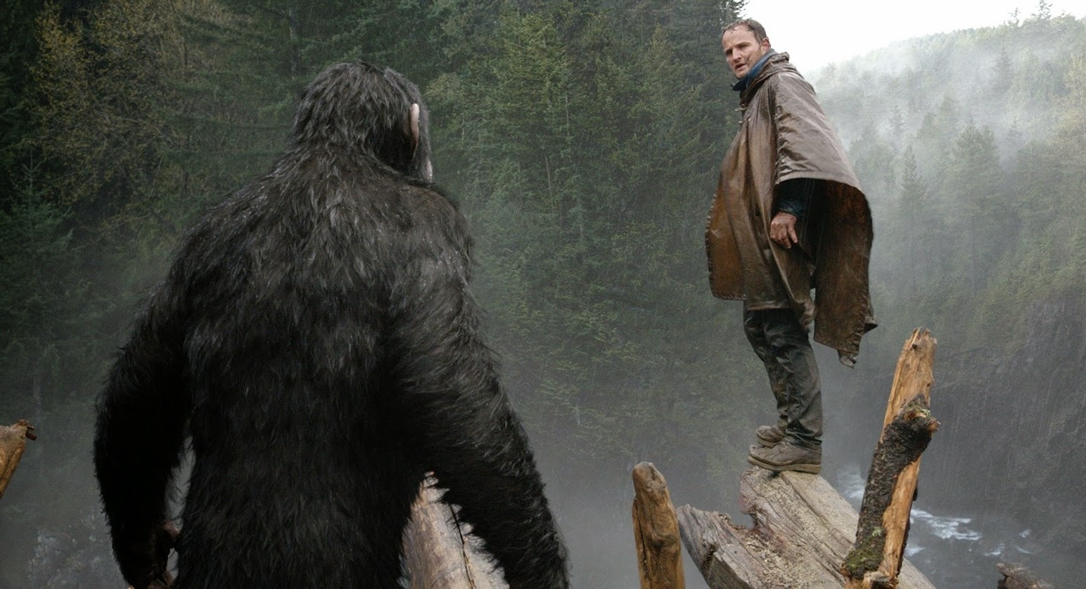 dawn of the planet of the apes inset
