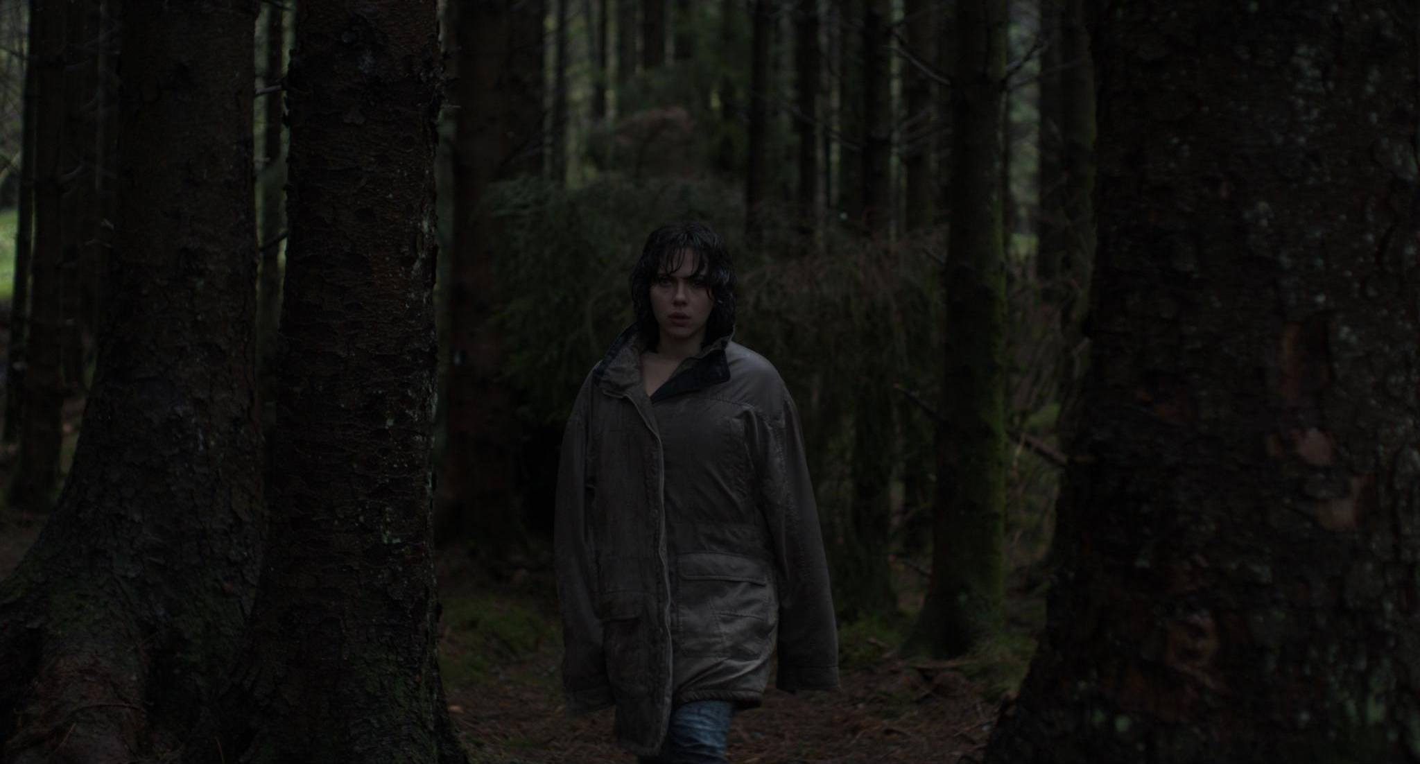 under the skin inset 2