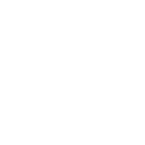 BDN Self Drilling Screws Logo