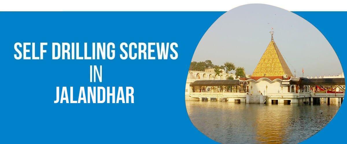 Self Drilling Screws in jalandhar