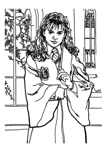 Hermione Granger Coloring Page : hermione, granger, coloring, Harry, Potter, Coloring, Pages, Printable