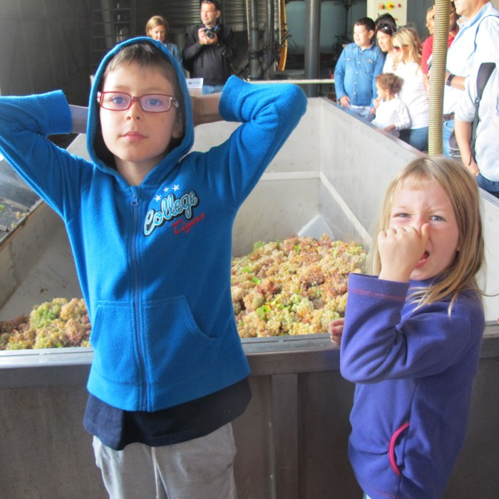 Our group watching the grapes in the vat. Lola's olfactory impressions are somewhat negative.