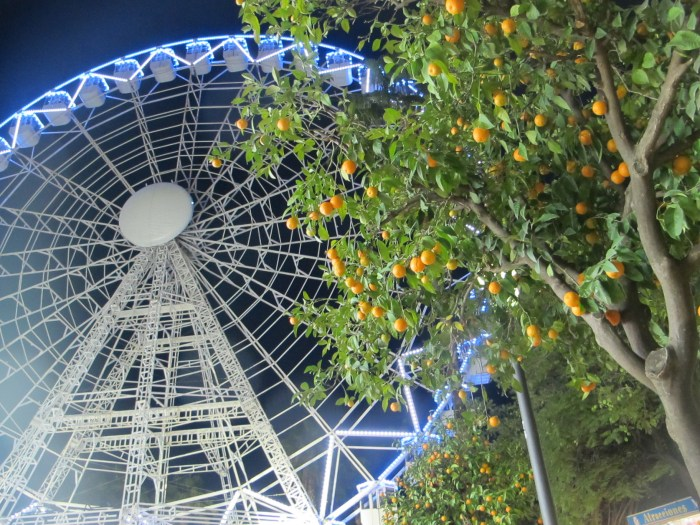 Christmas in Seville - an illuminated big wheel, and oranges on trees!