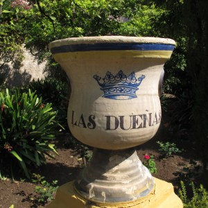 3 ceramic plant pot LAs D