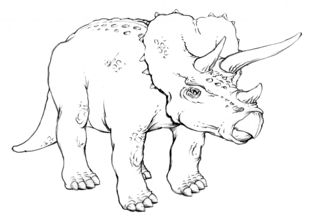 Online Lesson Triceratops