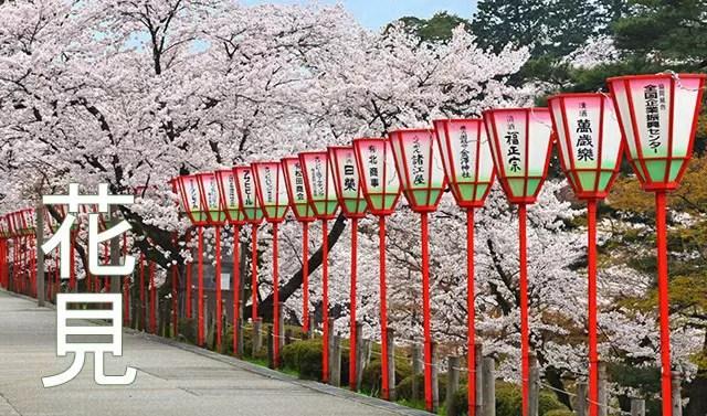 Tips for Sakura Viewing, or hanami (花見).